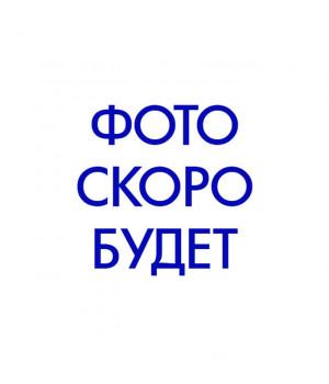 Trоdat Printy 4912 P4 TYPO РУС, ЛАТ. Цвет корпуса: серый