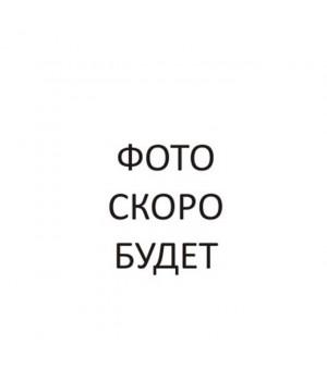 Colop Pocket Stamp Oval 30. Цвет корпуса: рубин